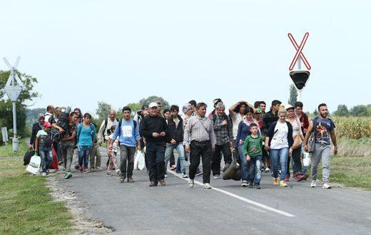 migrants-wik-com